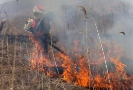 В районе полыхают природные пожары